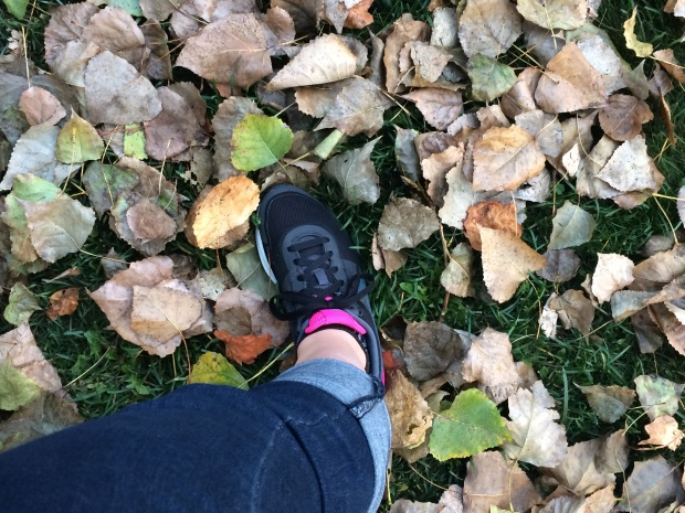 Ah! el otoño….